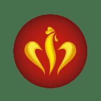 frangus, frangus logo, rei dos frangos, rei dos frangos logo, portugal food, frango grelhado, grilled chicken, deep frozen food
